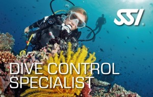 182411-Dive-Control-Specialist