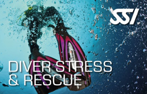 SSI STRESS & RESCUE