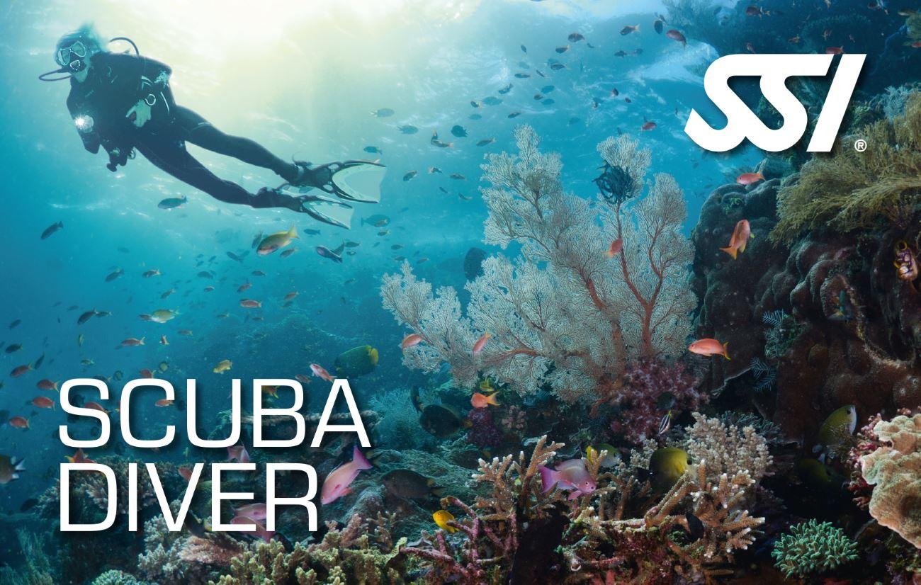 Corso Scuba Diver SSI