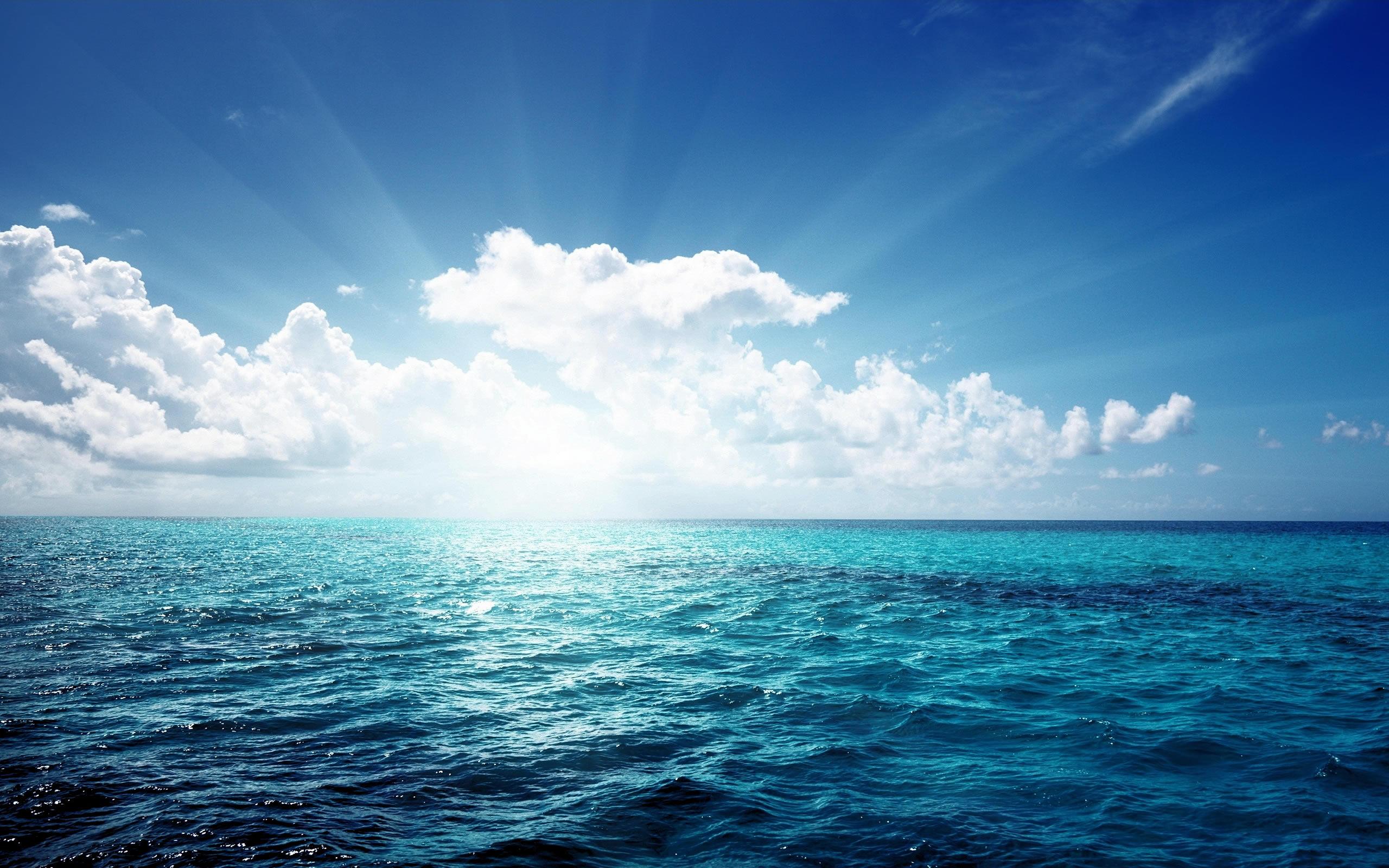 Progetto Clean Sea Life: Subacquei per un mare più pulito