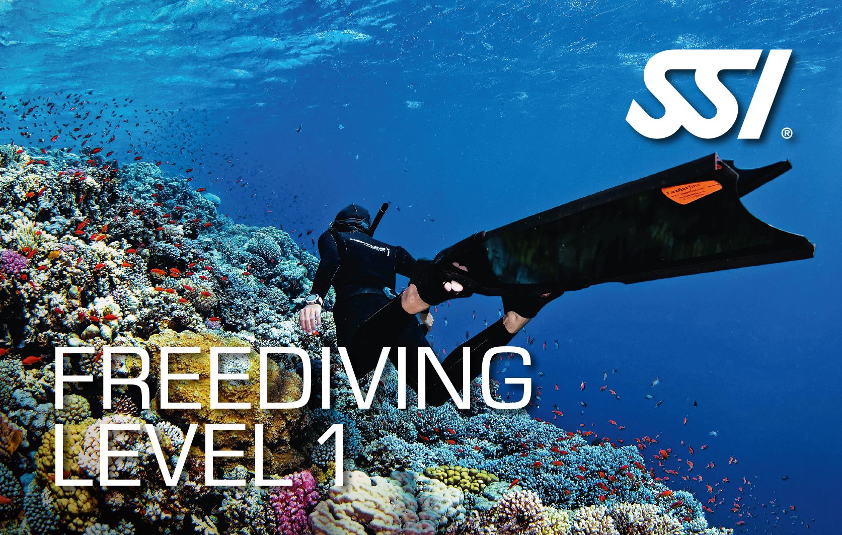 Corso Apnea Freediving SSI 1° livello – Roma Ostiense